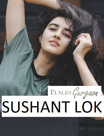 call-girls-sushant-lok